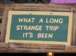 what a long strange trip